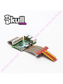 Raspberry Pi GPIO Cable Extensor Interface